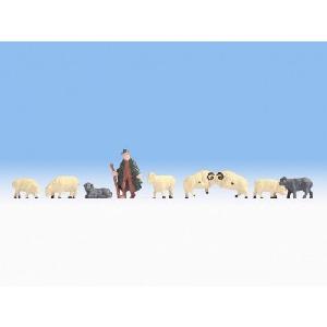Noch Herder met Schapen