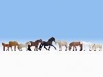Noch Paarden