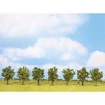 Noch Bomen 7st. Fruitbomen