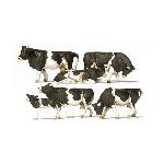Preiser Koeien zwart-bond  1:87